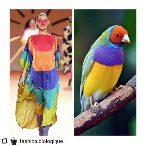 ad148a33 07c2 440c b881 415ea041ea80 300x300 - Estampas: A moda imita a natureza