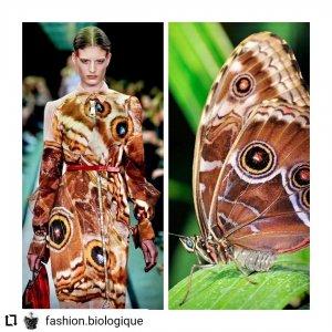 c058c27b 72f2 43d5 aaf8 c20bc78091d0 300x300 - Estampas: A moda imita a natureza