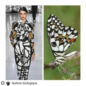 d7af4471 4ebe 4cd8 8ab8 dc9a4b7eaa1c 300x300 - Estampas: A moda imita a natureza